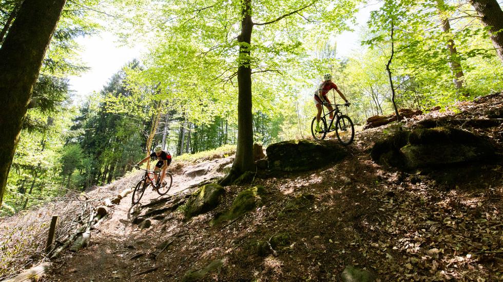 Zwei Mountainbiker auf der Pur St. Ingbert